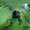 شرکت برق صنعت علی