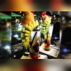 کافه رستوران لامیراژ در کرج