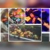 مجموعه تکثیر و پرورش آبزیان زینتی آکوعظیمی