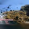 کلوپ تفریحات دریایی ایران زمین- تصویر کوچک