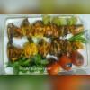 رستوران دیاکو در زاهدان