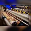 کارخانه قالیشویی و مبل شویی مهستان در رشت