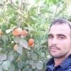 نهالستان مهندس سعید زردادی