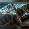 گالری مبل ابتکار در قم
