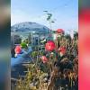 گلکده بهار در عباس آباد