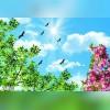 تولید و پخش سقف کاذب و کناف | آسمان مجازی و تایل CNC پارسیان سازه 09125280181