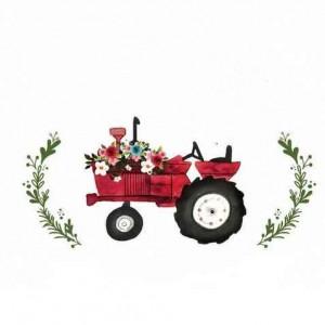 تولید قطعات و ماشین آلات کشاورزی و باغبانی فرزادی
