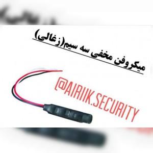 سیستم امنیتی آیریک