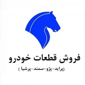 فروشگاه لوازم یدکی پژو و پراید فرزاد پولادی