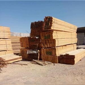 چوب بری بوستان