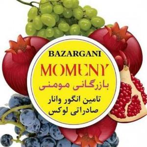 شرکت بازرگانی صادرات انار و انگور مومنی