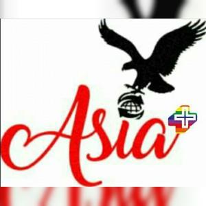 سینک گرانیتی آسیا+